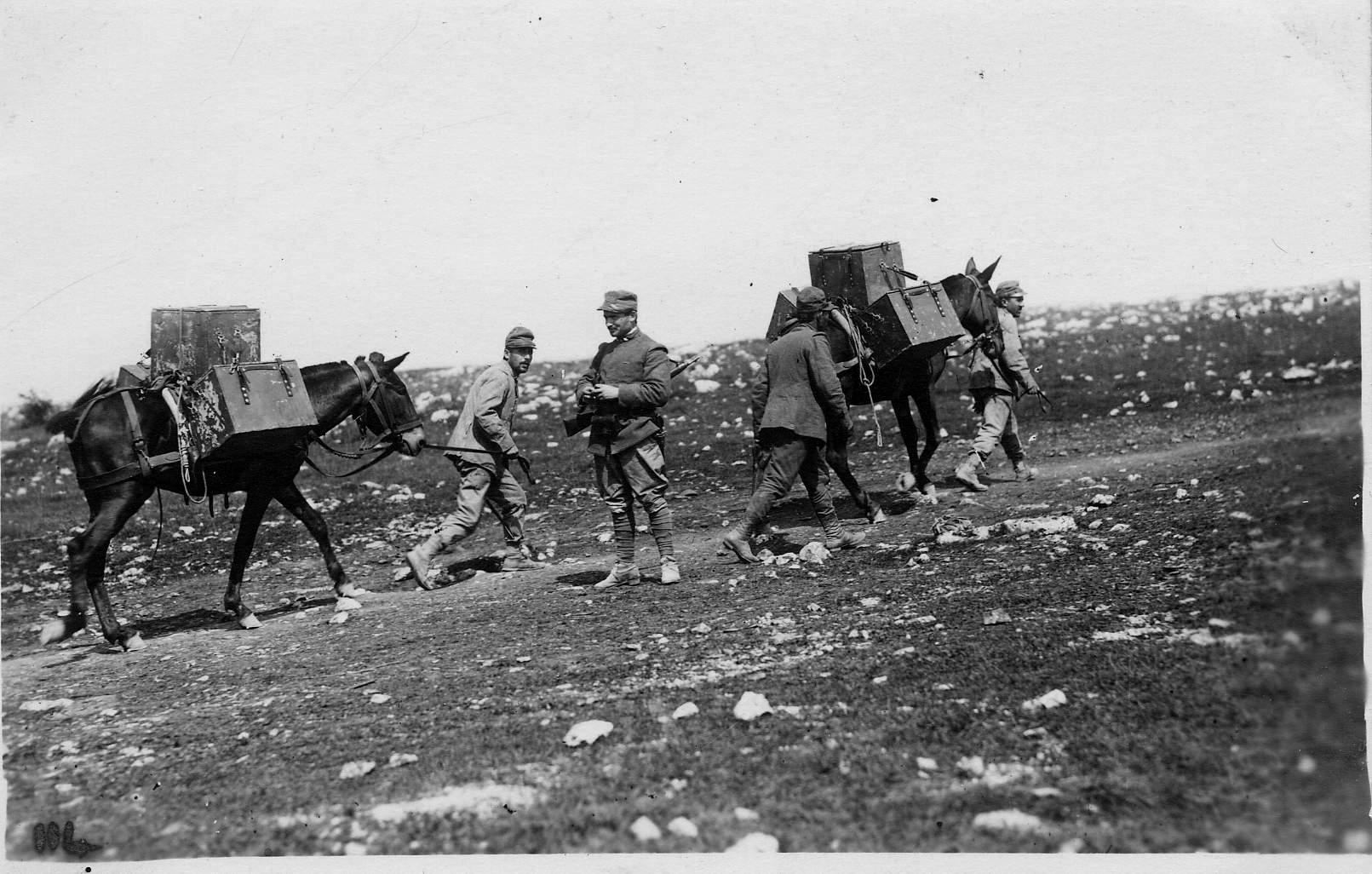 4 battaglia dell 39 isonzo storia e memoria di bologna for Battaglia di milano