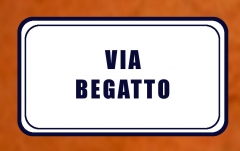 Begatto